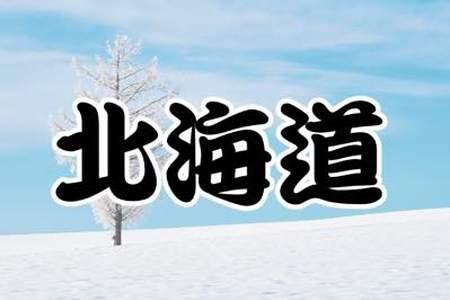 144票で「北海道」