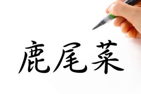 「鹿尾菜(ヒジキ)」