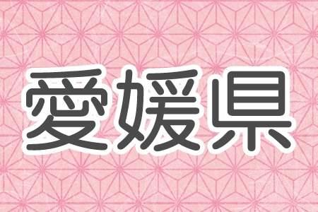 「愛媛県」