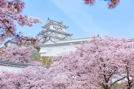 兵庫県の「姫路城」