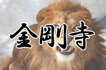 「金剛寺(こんごうじ)」