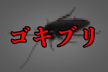 「ゴキブリ」